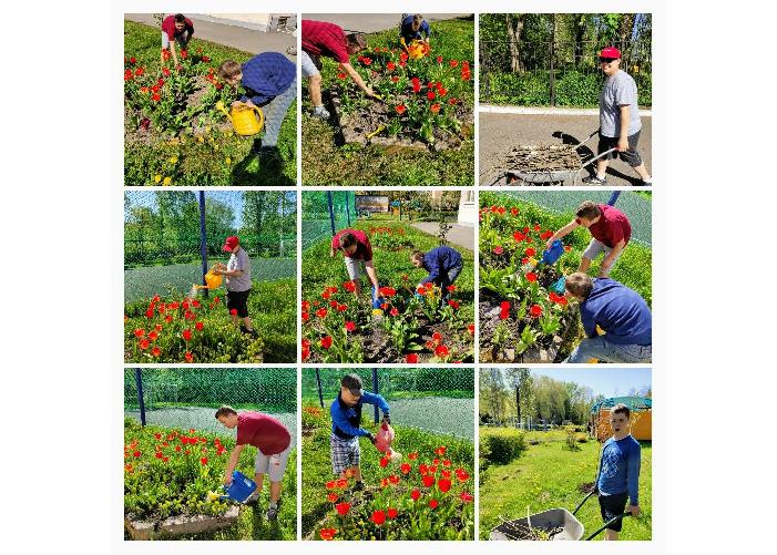 Проект «Город-сад»
